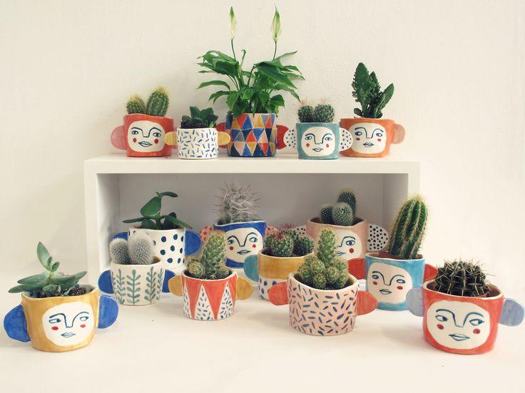 cactus faces