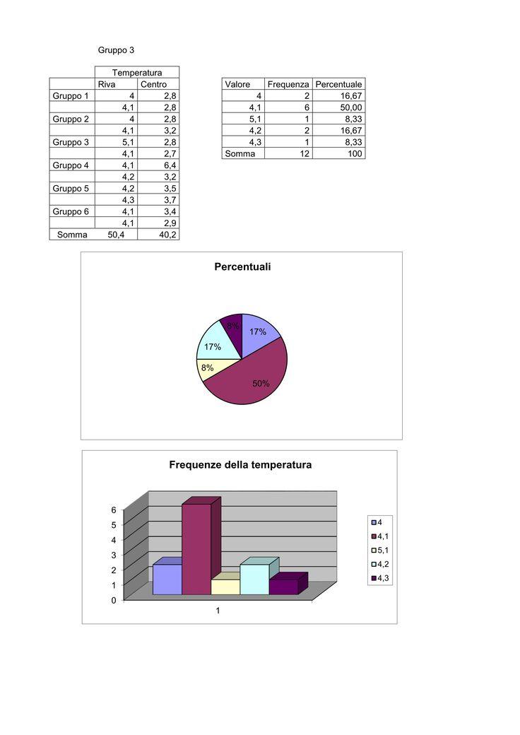 Rielaborazione con Excell dei dati e visualizzazione dei risultati mediante grafici. Il lavoro è stato fatto a gruppi. Ogni gruppo ha rielaborato un test.