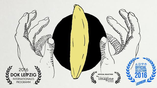 AMARILLO http://motionographer.com/quickie/amarillo/?utm_campaign=coschedule&utm_source=pinterest&utm_medium=Justin&utm_content=AMARILLO