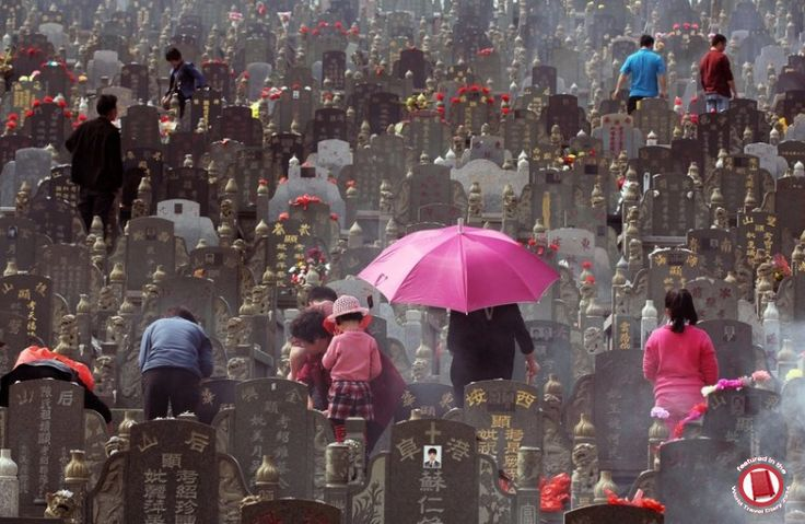 Tomb Sweeping Day ··· photo by Theepochtimes