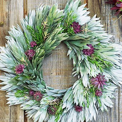 australian flora wreath - Google Search