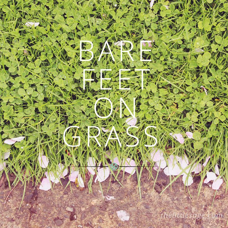 If you find yourself with racing thoughts and your head in the clouds, take some time out, take off your shoes and plant your bare feet in the grass.   Ground and feel the life energy flow through you, bringing you back down to earth.  More tips for intuitive living at www.thelittlesage.com