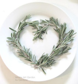 Rosemary for RemembranceCrafts Ideas, Post, Herbs Garnish, Memories, Rosemary Heart, Hearth, Plates Herbs, Medicine Herbs, Cake Toppers