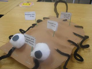 Mrs. Johnson's First Grade: New Product: Sonoran Desert Ecosystem