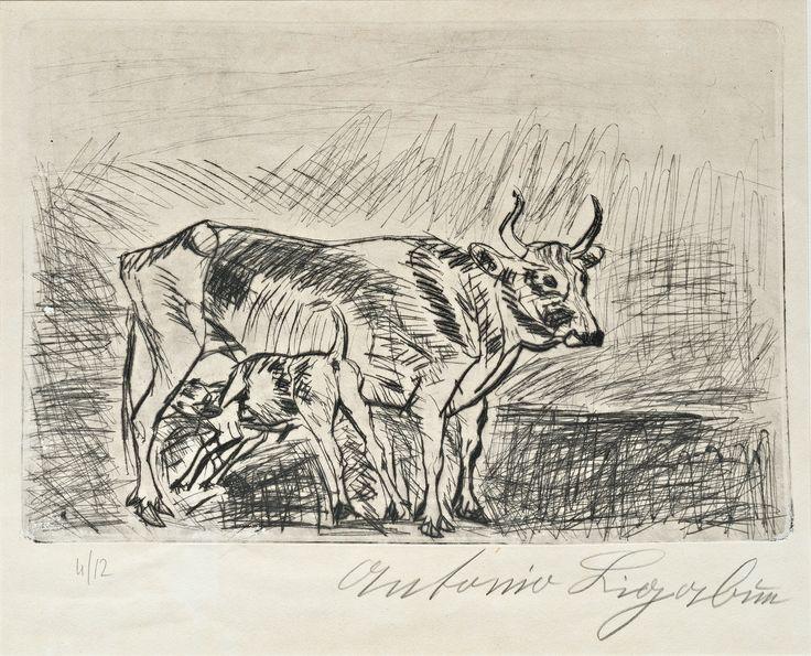 """1950.30.18 Antonio Ligabue, """"Mucca e vitello"""" #antonioligabue"""