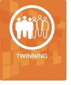 Methods - Twinning