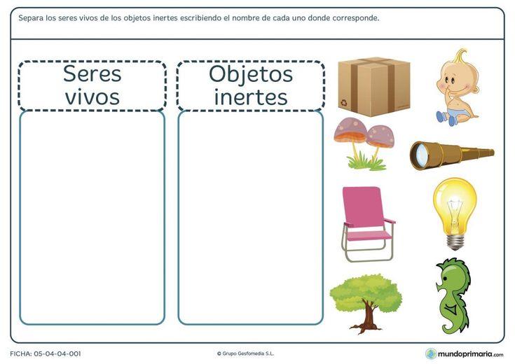 Ficha de diferenciar seres vivos de objetos inertes para primaria                                                                                                                                                                                 Más