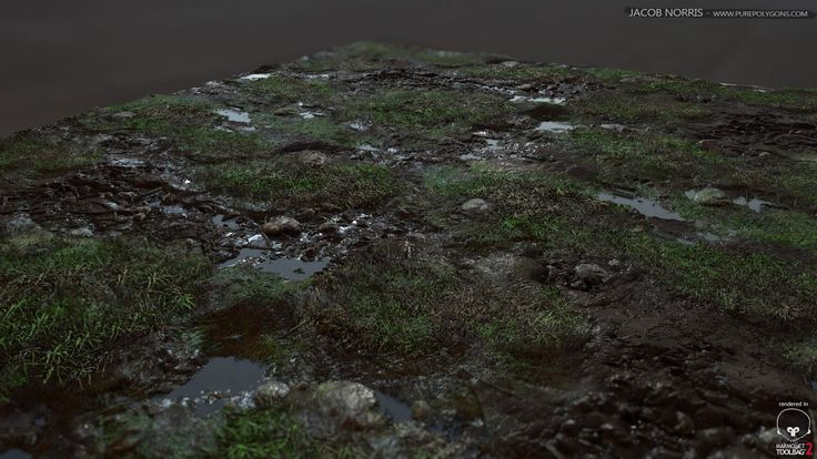 Grass with Rocks and Puddles, Jacob Norris on ArtStation at https://www.artstation.com/artwork/grass-with-rocks-and-puddles