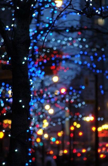 Fairie lights in winter ~