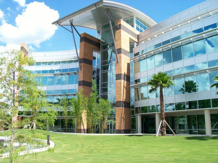 Top 5 majors Engineering, Biomedical Sciences, Biology