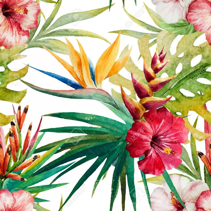 Beautiful Vector Pattern With Nice Watercolor Tropical Flowers Royalty Free Cliparts Vectors And Stock