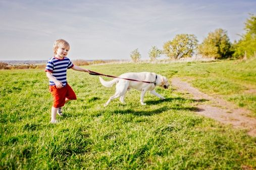 Lots of kids don't get enough exercise.     Walking every day, even if it's just to take the dog out, is a great way to get outside with your kids!