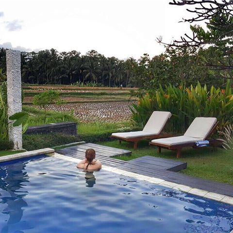 A new post is up on my travelblog The Exploringberry: Affordable Luxury at The Samara Villas and Restaurant in Ubud, Bali. #checkitout for a complete hotel review🌴💙