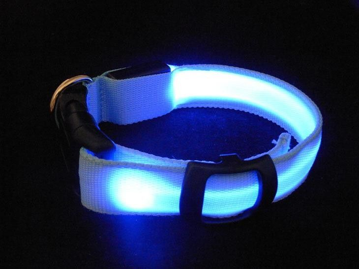 Dog Collar With LED Safety Light