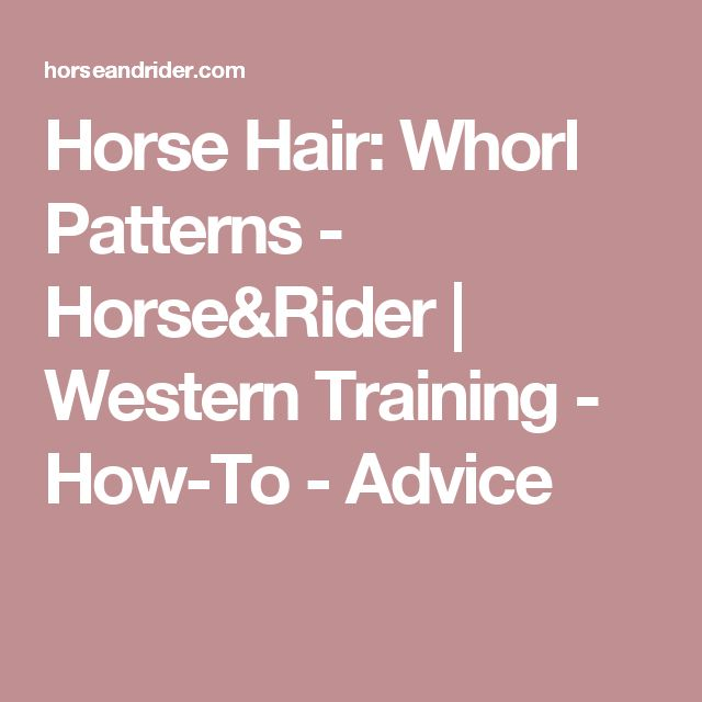 Horse Hair: Whorl Patterns - Horse&Rider | Western Training - How-To - Advice