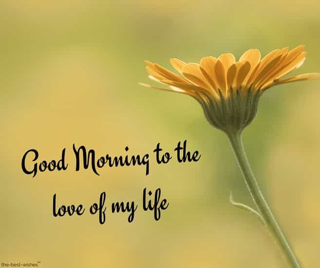 Romantic Good Morning Message For Husband Best Collection Romantic Good Morning Messages Morning Quotes For Him Good Morning Wishes Love