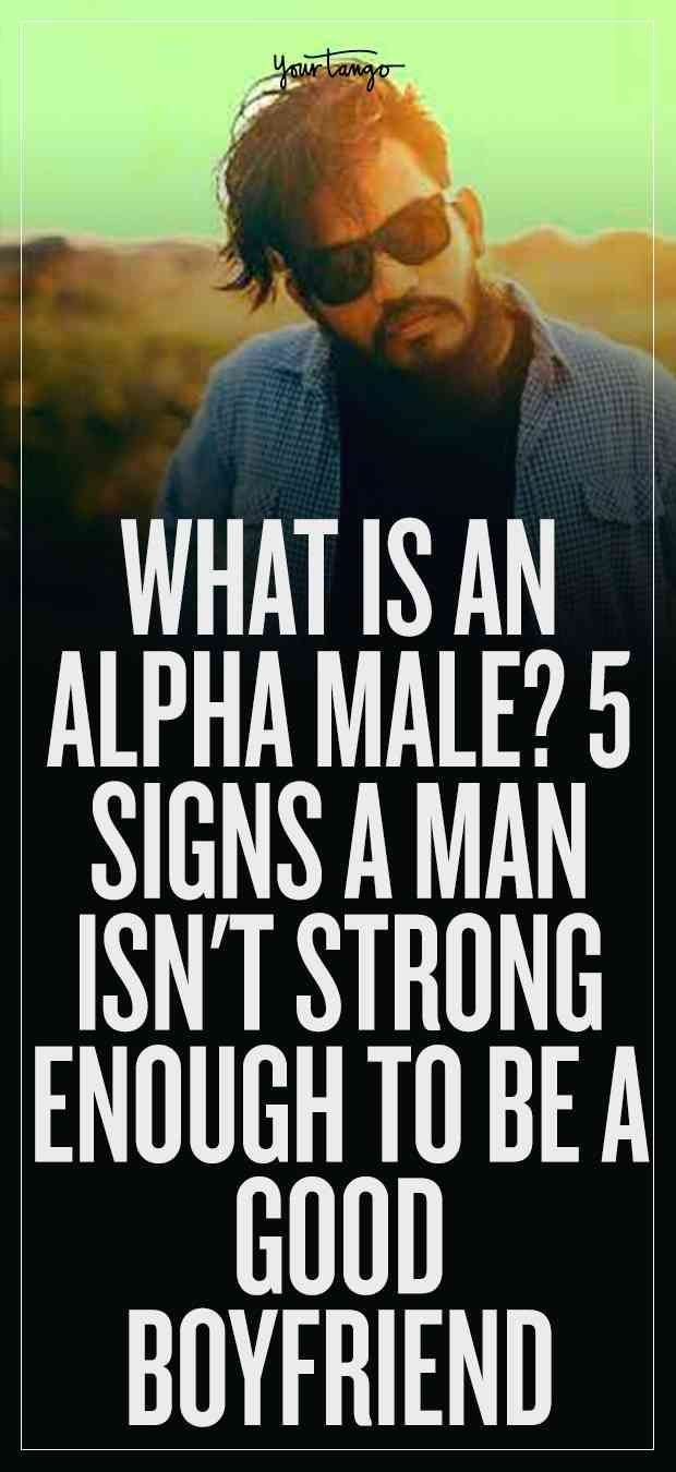 6 signs youre hookup an alpha male