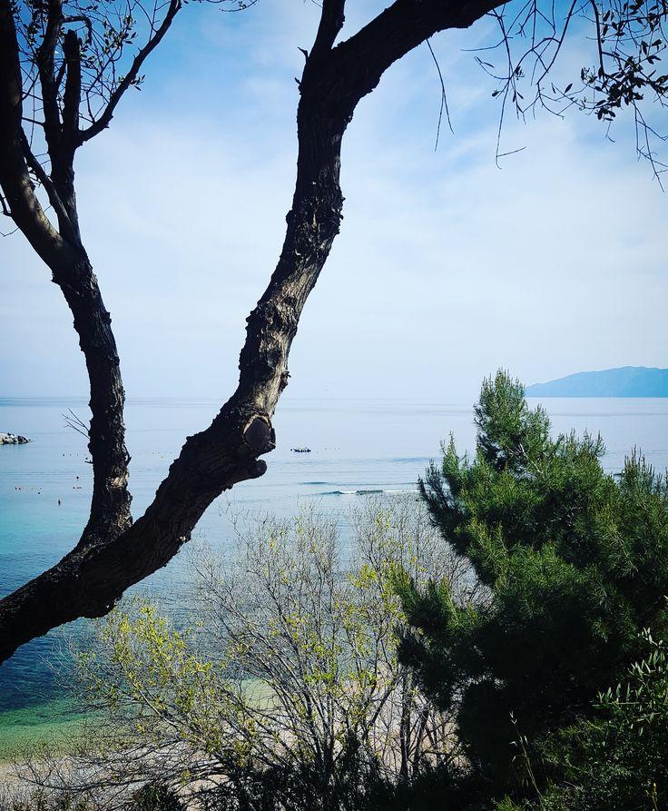 Cala Gonone. #Sardegna