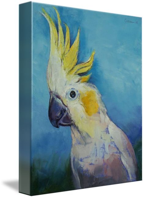 """""""Cockatoo"""" by Michael Creese: Original oil on canvas painting by American artist Michael Creese. // Buy prints, posters, canvas and framed wall art directly from thousands of independent working artists at Imagekind.com."""