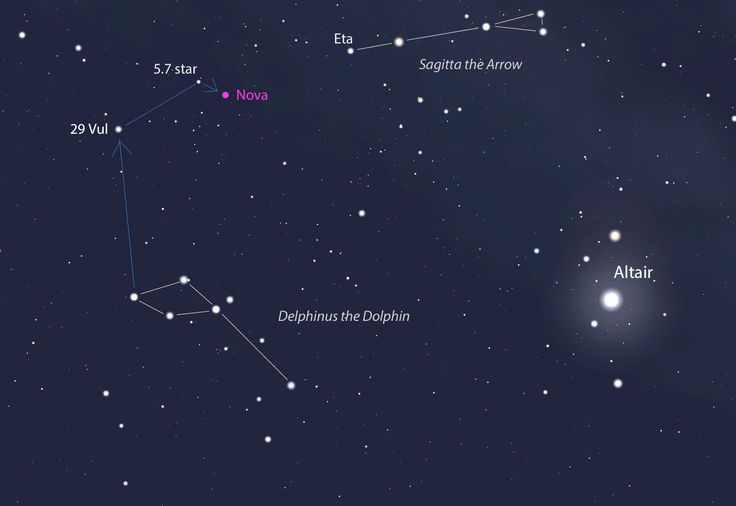 The Delphinus Constellation