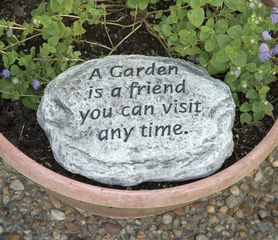 gardening quotes - Google Search