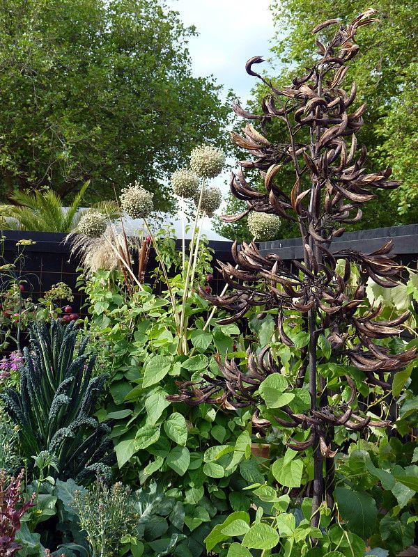 178 best potager plant combinations images on pinterest for Ornamental vegetable garden design