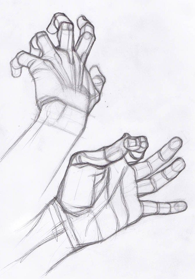 AnatoRef   Hand Studies                                                                                                                                                                                 Más
