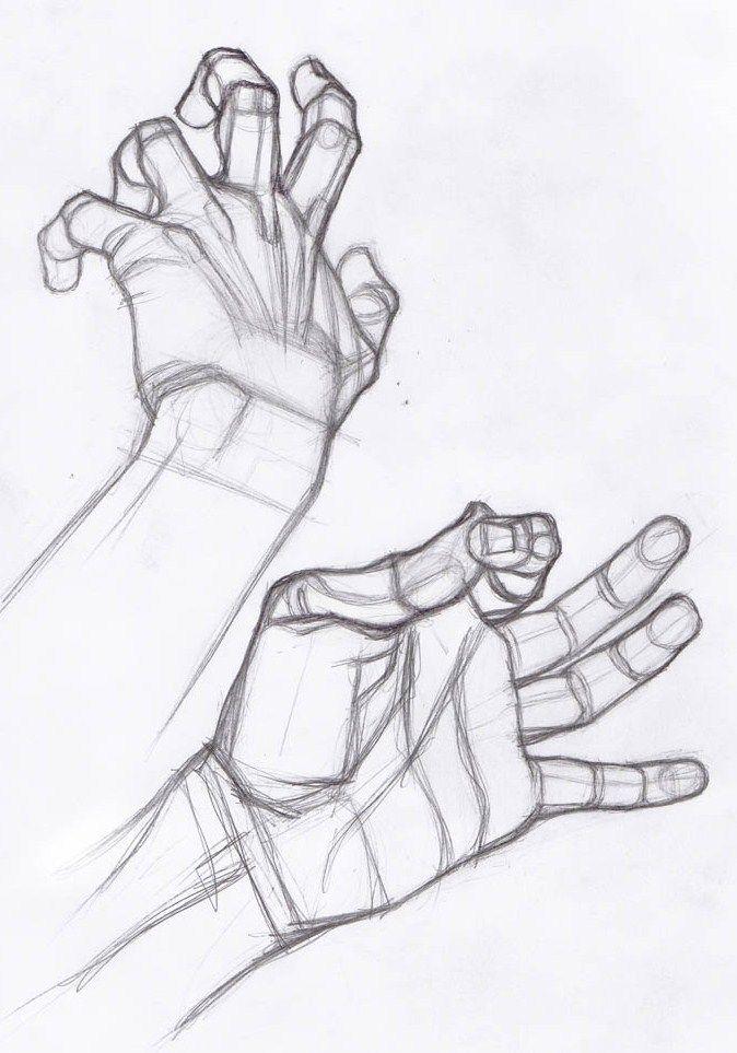 AnatoRef | Hand Studies Más