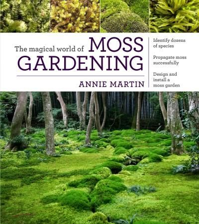 Mosses are a gardeners dream. These emerald beauties thrive where nothing else grows, and they provide year-round interest in all climates. Deer-resistant and immune to typical garden insects and dise