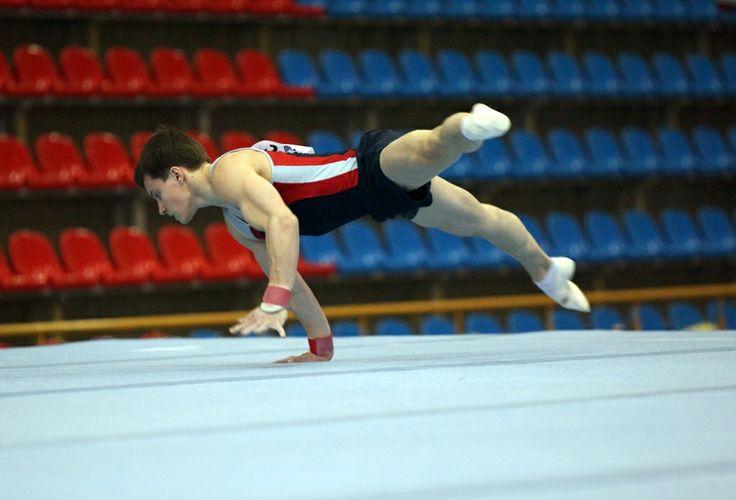 Федерации спортивной гимнастики России