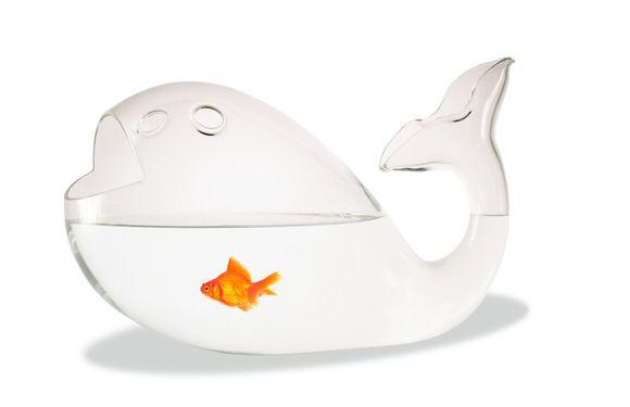 Alessandra Baldereschi Fish Bowl