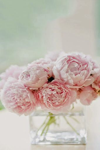 i love the simple beauty of pale pink peonies in a glass vase- pretty for bridal luncheon- as well as for reception tables