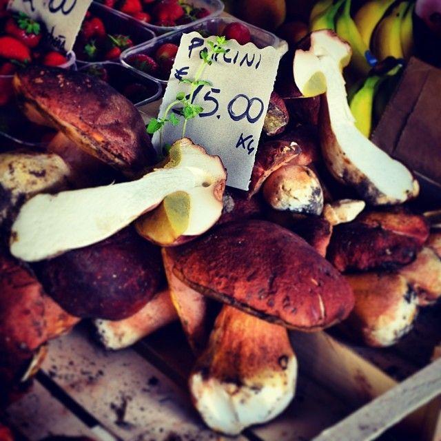 May means Porcini! #porcini #mercatosantambrogio...