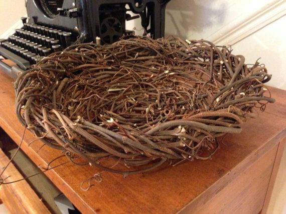 Shallow Viney Basket  Handwoven from Wild by CarolinaGothics, $48.00