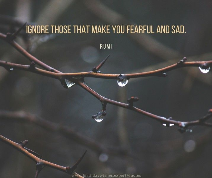 Ignore those that make you fearful and sad, that degrade you back towards disease and death. Rumi quote about life.