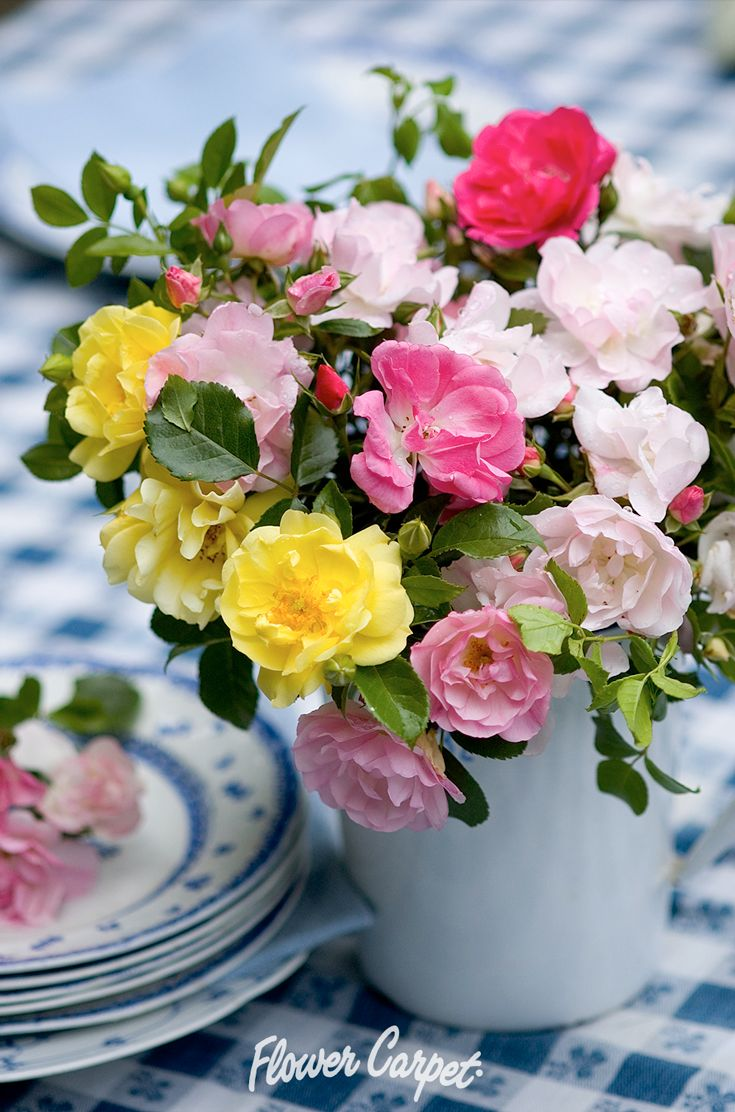 65 best garden designs with roses images on pinterest carpets flower carpet roses also make lovely long lasting cut flowers shown here are dhlflorist Image collections