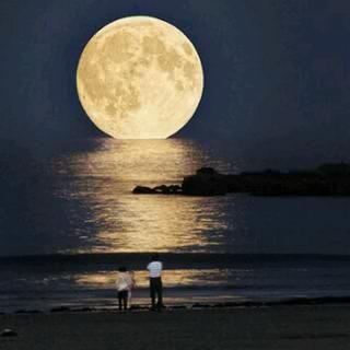 --Super Moon--Harvest Moon, Moon, Super Moon, The Ocean, Beautiful, Fullmoon, Full Moon, Places, The Moon