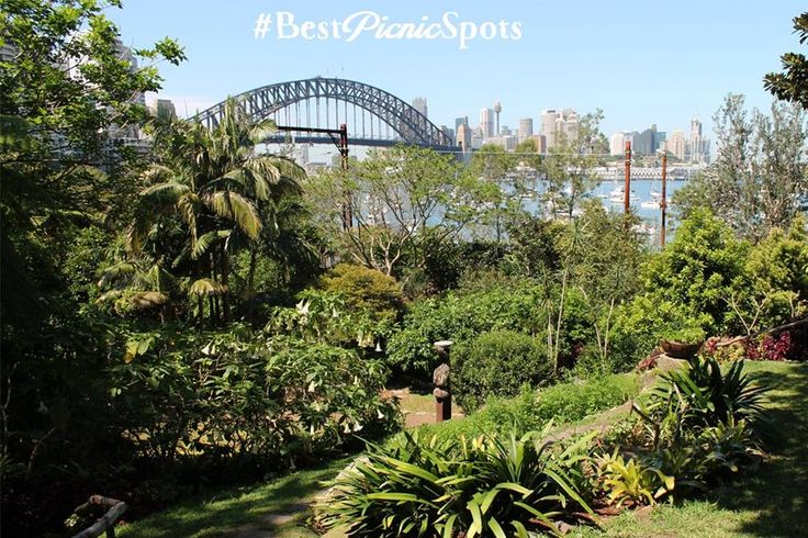 Wendy Whiteley's Secret Garden, Lavender Bay. Breathtakingly beautiful, close to the water and Luna Park. One of the best picnic destinations in Sydney to share precious time with family and friends. #BestNaturePicnic #FamilyPicnics #Picnics #PicnicWithFriends #SydneysBestPicnicSpots #WendyWhiteleysSecrectGarden #SydneyHarbour #SnowgooseGiftHampers