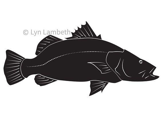 Fish clipart, Barramundi, instant download, sports fishing SVG