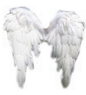 Zening life: Angels wings - Asas de Anjos