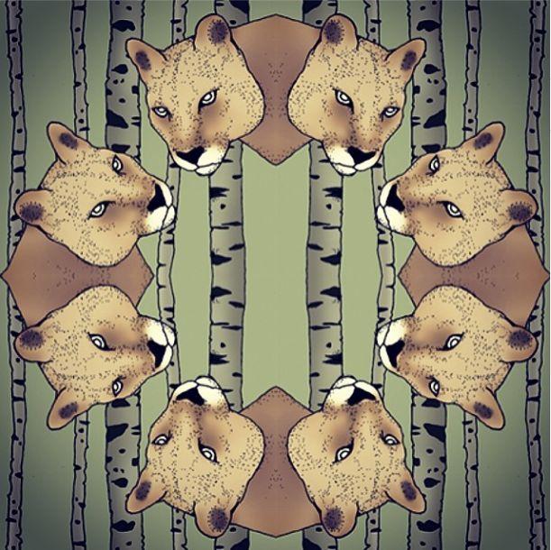 Antilopes print