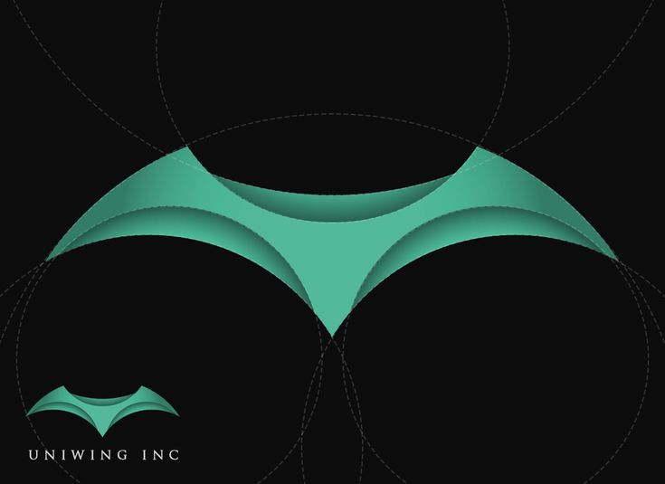 This is a modern 3D logo I created for a flight company.