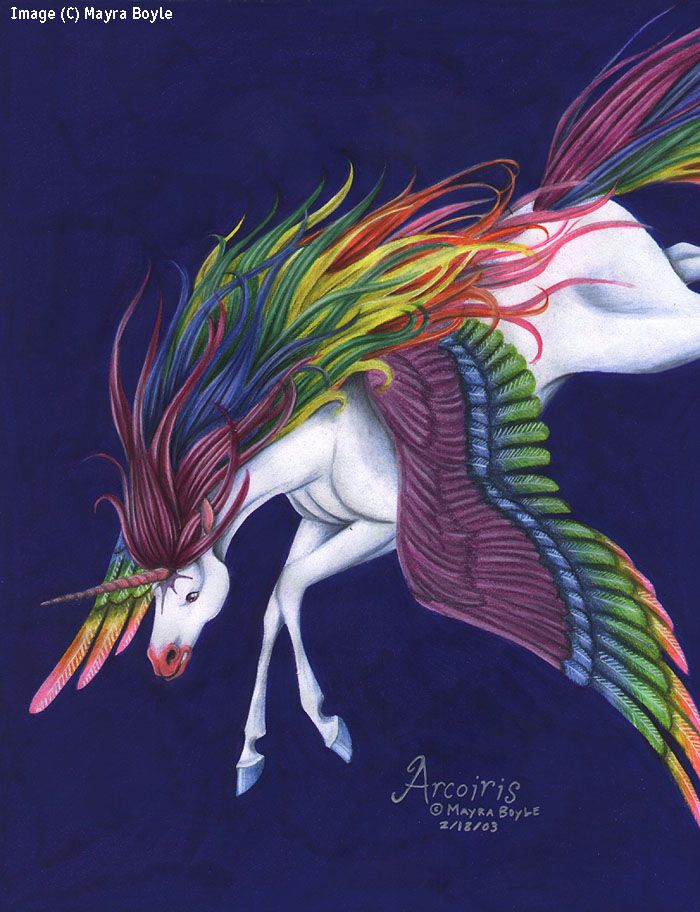 Unicorn With Wings And Rainbow 343 best images...