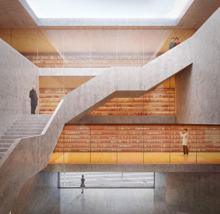 Durisch + Nolli . new museum of natural history . basel (5)