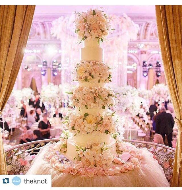 David Tutera Weddings Ideas: 1000+ Images About David Tutera On Pinterest