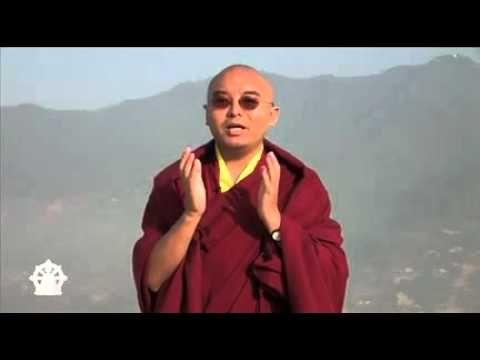 As Causas da Ansiedade e do Sofrimento - Mingyur Rinpoche