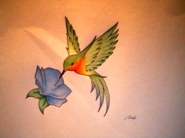 hummingbird tattoo idea... Dif flower.... I like that it doesn't look guppy'ish! (No fat belly like a lot of other humming tattoos)