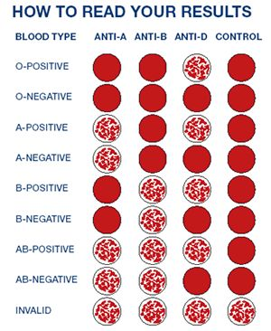 blood group chart