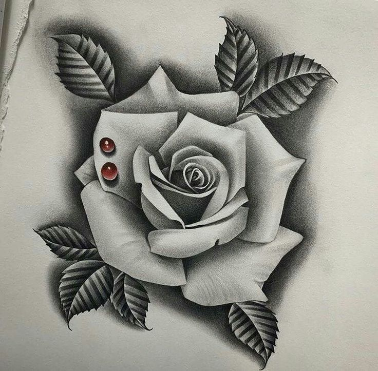 Pin By Raul Andres Hernandez Guillen On Ideas Tatuajes In 2020 Roses Drawing Rose Drawing Tattoo Rose Drawing