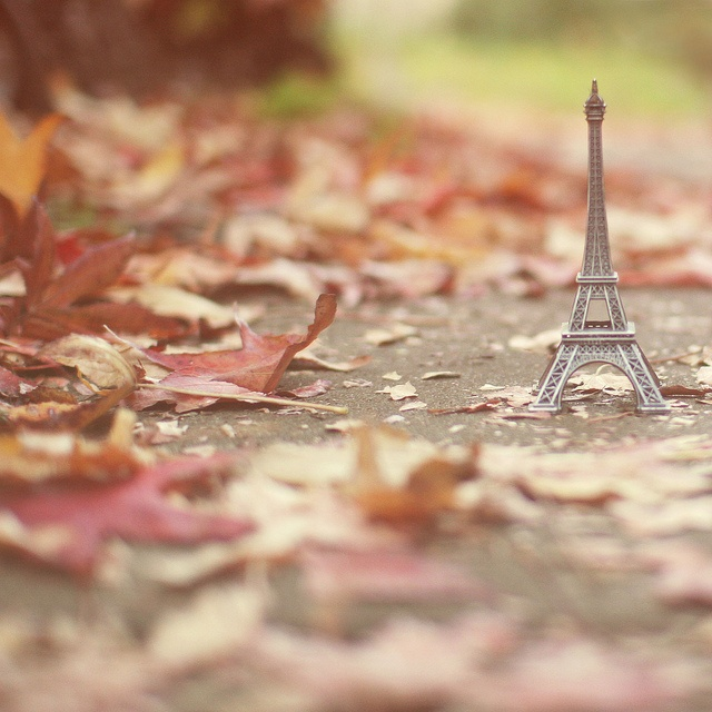 I would love to see an Autumn in Paris... by liz.rusby, via Flickr